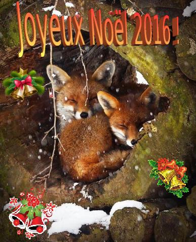 carte-de-noel-2016