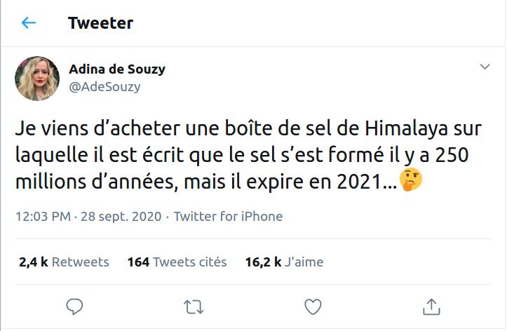 Adina de Zouzy